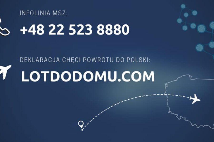 Specjalna infolinia MSZ dla powracających!